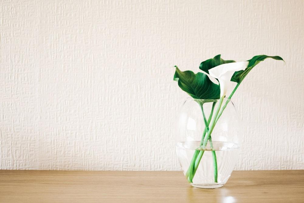 ایده های خلاقانه برای دکوراسیون منزل : گلدان های شیشه ای شیک و ارزان